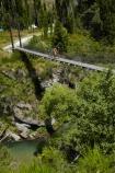 Arrow-River;Arrow-River-Bridges-Ride;Arrowtown;Arrowtown-cycle-track;Arrowtown-cycle-trail;bicycle;bicycles;bike;bike-track;bike-tracks;bike-trail;bike-trails;bikes;biking;bridge;bridges;cycle;cycle-track;cycle-tracks;cycle-trail;cycle-trails;cycler;cyclers;cycles;cycling;cyclist;cyclists;foot-bridge;foot-bridges;footbridge;footbridges;green;leisure;mountain-bike;mountain-biker;mountain-bikers;mountain-bikes;mtn-bike;mtn-biker;mtn-bikers;mtn-bikes;N.Z.;New-Zealand;NZ;Otago;pedestrian-bridge;pedestrian-bridges;people;person;push-bike;push-bikes;push_bike;push_bikes;pushbike;pushbikes;Queenstown-Bike-Trail;Queenstown-Cycle-Trail;Queenstown-Trail;Queenstown-Trails;recreation;river;rivers;S.I.;SI;South-Is;South-Island;Southern-Discoveries-Bridge;Southern-Lakes;Southern-Lakes-District;Southern-Lakes-Region;Sth-Is;suspension-bridge;suspension-bridges;swing-bridge;swing-bridges;tourism;tourist;tourists;wire-bridge;wire-bridges