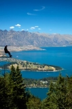 adrenaline;adventure-tourism;aerial-ropeslide;aerial-runway;death-slide;fast;flying-fox;flying-foxes;flying_fox;flying_foxes;flyingfox;flyingfoxes;foefie-slide;heights;high;lake;Lake-Wakatipu;lakes;N.Z.;New-Zealand;NZ;Otago;people;person;Queenstown;Queenstown-Bay;S.I.;SI;skyline;South-Is;South-Is.;South-Island;Southern-Lakes;Southern-Lakes-District;Southern-Lakes-Region;Sth-Is;Sypline;The-Remarkables;tourism;tourist;tourists;tree;trees;zip-cable;zip-cables;zip-line;zip-lines;zip-lining;Zip-Trek;Zip-Trek-Ecotours;zip-wire;zip-wires;zip_line;zip_lines;zip_lining;zipline;ziplines;ziplining;Ziptrek;Ziptrek-Ecotours
