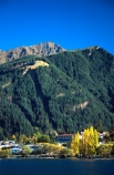 Queenstown;Central-Otago;tourism;Lake-Wakatipu;Wakatipu;lake;shore;green;blue;yellow;mountain;mountains;pine;pine-tree;tree;trees;blanket;cover;covered;blanketed;holiday;autumn;fall