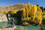 Autumn;bridge;bridges;central-otago;color;colour;fall;gold;golden;Kawarau-Gorge;Kawarau-River;New-Zealand;poplar;poplars;Queenstown-Road;river;rivers;season;seasonal;seasons;South-Island;tree;trees;valley;valleys;victoria-bridge;willow;willows;yellow