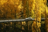 Autumn;bridge;bridges;car;cars;central-otago;color;colour;fall;gold;golden;holiday;holidaying;holidays;Kawarau-Gorge;Kawarau-River;New-Zealand;poplar;poplars;Queenstown-Road;river;rivers;season;seasonal;seasons;South-Island;tourism;tourist;tourists;travel;traveler;traveling;traveller;travelling;tree;trees;vacation;vacationers;vacationing;vacations;valley;valleys;victoria-bridge;willow;willows;yellow