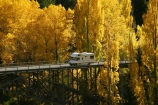 Autumn;bridge;bridges;camper;camper-van;camper-vans;camper_van;camper_vans;campers;campervan;campervans;car;cars;central-otago;color;colour;fall;gold;golden;holiday;holidaying;holidays;Kawarau-Gorge;Kawarau-River;motor-caravan;motor-caravans;motor-home;motor-homes;motor_home;motor_homes;motorhome;motorhomes;New-Zealand;poplar;poplars;Queenstown-Road;river;rivers;season;seasonal;seasons;South-Island;tour;touring;tourism;tourist;tourists;travel;traveler;travelers;traveling;traveller;travellers;travelling;tree;trees;vacation;vacationers;vacationing;vacations;valley;valleys;van;vans;victoria-bridge;willow;willows;yellow