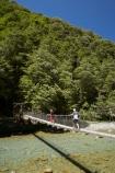 beautiful;beauty;Beech-Forest;bridge;bridges;bush;Caples-River;Caples-Valley;clean-water;clear-water;endemic;foot-bridge;foot-bridges;footbridge;footbridges;forest;forests;green;Greenstone-Track;Greenstone-Valley;hike;hiker;hikers;hiking;hiking-track;hiking-tracks;N.Z.;native;native-bush;natives;natural;nature;New-Zealand;Nothofagus;NZ;Otago;pathways;pedestrian-bridge;pedestrian-bridges;pure-water;rain-forest;rain-forests;rain_forest;rain_forests;rainforest;rainforests;river;rivers;S.I.;scene;scenic;SI;South-Is.;South-Island;southern-beeches;subtropical-rainforest;subtropical-rainforests;suspension-bridge;suspension-bridges;swing-bridge;swing-bridges;Te-Ara-Roa;Te-Araroa;Te-Araroa-Pathway;Te-Araroa-Walkway;The-Long-Pathway;The-Long-Walkway;timber;track;tracks;tramp;tramper;trampers;tramping;tramping-track;tramping-tracks;tramping-trail;tramping-trails;tree;trees;trek;treker;trekers;treking;treking-track;treking-tracks;trekker;trekkers;trekking;trekking-track;trekking-tracks;trekking-trail;trekking-trails;walk;walker;walkers;walking;walking-track;walking-tracks;walking-trail;walking-trails;walkway;walkways;wire-bridge;wire-bridges;wood;woods
