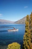 autuminal;autumn;autumn-colour;autumn-colours;autumnal;boat;boats;calm;color;colors;colour;colours;deciduous;earnslaw;fall;historic-boat;historical-boat;lake;Lake-Wakatipu;lakes;leaf;leaves;N.Z.;New-Zealand;NZ;oplar;Otago;placid;poplar-tree;poplar-trees;poplars;Queenstown;quiet;reflection;reflections;S.I.;season;seasonal;seasons;serene;ship;ships;SI;smooth;South-Is.;South-Island;Southern-Lakes;Southern-Lakes-District;Southern-Lakes-Region;steam;Steam-boat;steam-boats;steam-ship;steam-ships;Steam_boat;steam_boats;steam_ship;steam_ships;Steamboat;steamboats;steamer;steamers;steamship;steamships;still;t.s.s.-earnslaw;tourism;tourist;tourist-attraction;tourist-attractions;tourists;tranquil;tree;trees;tss-earnslaw;water;willow-tree;willow-trees;willows