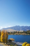 autuminal;autumn;autumn-colour;autumn-colours;autumnal;Central-Otago;color;colors;colour;colours;deciduous;fall;lake;Lake-Wakatipu;lakes;mountain;mountains;N.Z.;New-Zealand;NZ;Otago;poplar;poplar-tree;poplar-trees;poplars;Queenstown;Queenstown-Bay;Queenstown-Gardens;Queenstown-Peninsula;Remarkables;S.I.;season;seasonal;seasons;SI;South-Is.;South-Island;Southern-Lakes;Southern-Lakes-District;Southern-Lakes-Region;The-Remarkables;tree;trees;willow;willow-tree;willow-trees;willows