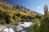 adrenaline;adventure;adventure-tourism;Arthurs-Point;Arthurs-Point;autuminal;autumn;autumn-colour;autumn-colours;autumnal;boat;boats;Central-Otago;color;colors;colour;colours;danger;deciduous;exciting;fall;fast;fun;gorge;gorges;jet-boat;jet-boats;jet_boat;jet_boats;jetboat;jetboats;N.Z.;narrow;New-Zealand;NZ;Otago;passenger;passengers;Queenstown;quick;red;ride;rides;river;river-bank;riverbank;rivers;S.I.;season;seasonal;seasons;shotover;Shotover-Canyon;shotover-gorge;shotover-jet;Shotover-Jetboat;Shotover-River;SI;South-Is.;South-Island;Southern-Lakes;Southern-Lakes-District;Southern-Lakes-Region;speed;speed-boat;speed-boats;speed_boat;speed_boats;speedboat;speedboats;speeding;speedy;splash;spray;thrill;tour;tourism;tourist;tourists;tours;tree;trees;wake;water