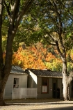 Arrowtown;autuminal;autumn;autumn-colour;autumn-colours;autumnal;building;buildings;Central-Otago;color;colors;colour;colours;deciduous;fall;heritage;historic;historic-building;historic-buildings;Historic-Cottages;historical;historical-building;historical-buildings;history;N.Z.;near-Queenstown;New-Zealand;NZ;old;Otago;S.I.;season;seasonal;seasons;SI;South-Is.;South-Island;Southern-Lakes;Southern-Lakes-District;Southern-Lakes-Region;tradition;traditional;tree;trees