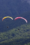 adrenaline;adventure;adventure-tourism;Air-Games;altitude;beautiful;beauty;Beech-Forest;bush;canopy;endemic;excite;excitement;extreme;extreme-sport;fly;flyer;flying;forest;forests;free;freedom;green;motorised-paraglider;motorised-paragliders;N.Z.;native;native-bush;natives;natural;nature;New-Zealand;New-Zealand-Air-Games;Nothofagus;NZ;NZ-Air-Games;Otago;para-motor;para-motors;para_motor;para_motors;parachute;parachutes;paraglide;paraglider;paragliders;paragliding;paramotor;paramotoring;paramotors;parapont;paraponter;paraponters;paraponting;paraponts;parasail;parasailer;parasailers;parasailing;parasails;power;powered;powered-aircraft;rain-forest;rain-forests;rain_forest;rain_forests;rainforest;rainforests;recreation;S.I.;scene;scenic;SI;skies;sky;soar;soaring;South-Island;southern-beeches;sport;sports;timber;tree;tree-trunk;tree-trunks;trees;trunk;trunks;view;wood;woods
