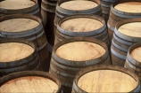 barrel;cultivation;grape;grapes;grapevine;horticulture;row;rows;vine;vines;vineyard;vineyards;vintage;wine;wineries;winery;wines