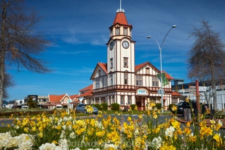 Bay-of-Plenty-Region;building;buildings;clock-tower;clock-towers;clocktower;clocktowers;flower;flowers;garden;gardens;heritage;historic;historic-building;historic-buildings;historical;historical-building;historical-buildings;history;information-centre;isite;isite-visitor-centre;N.I.;N.Z.;New-Zealand;NI;North-Is;North-Island;Nth-Is;NZ;old;old-post-office;Post-Office;Rotorua;Rotorua-information-centre;tradition;traditional;visitor-centre;visitor-information-centre;yellow;yellow-flower;yellow-flowers