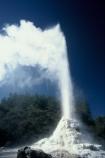 thermal;geothermal;hot;water;fountain;geysers;steam;lady-knox-geyser;pressure