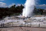 thermal;geothermal;hot;water;fountain;geysers;steam;pressure;hot-spring;spout;erupt;eruption;tourism;tourist