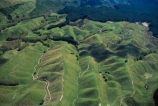 plantation;pinus-radiata;plantations;block;blocks;rural;farmland;agriculture;agricultural;aerial;aerials;paddocks;fields;field;meadow;meadows;paddock