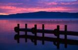 lakes;jetty;jetties;wharf;wharves;island;duck;duscks;pier;piers;water;sunrise