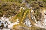 activity;algae;bay-of-plenty;color;colors;colour;colours;danger;dangerous;geothermal;holiday;holidaying;holidays;hot;muddy;N.I.;N.Z.;natural;nature;new-zealand;NI;north-is.;north-island;NZ;Orakei-Korako;Orakei-Korako-Thermal-Area;rotorua;silica-terrace;silica-terraces;thermal-vent;Taupo;thermal;thermal-activity;thermal-algae;thermal-area;thermal-terrace;thermal-terraces;tourism;travel;traveling;travelling;vacation;vacationing;vacations;volcanic;yellow