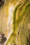 activity;algae;bay-of-plenty;danger;dangerous;geothermal;green;hot;muddy;N.I.;N.Z.;natural;nature;new-zealand;NI;north-is.;north-island;NZ;Orakei-Korako;Orakei-Korako-Thermal-Area;rotorua;Taupo;thermal;thermal-activity;thermal-algae;thermal-area;volcanic;yellow