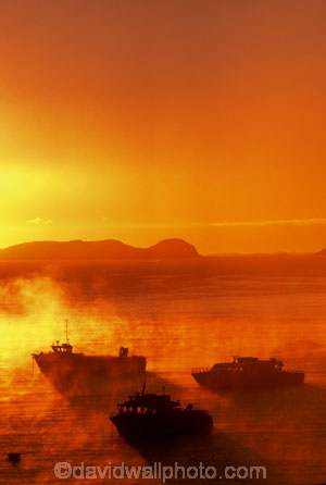 colour;colours;color;colors;orange;dawn;mist;fog;foggy;boat;island;bays;islands;ocean;sea;pacific