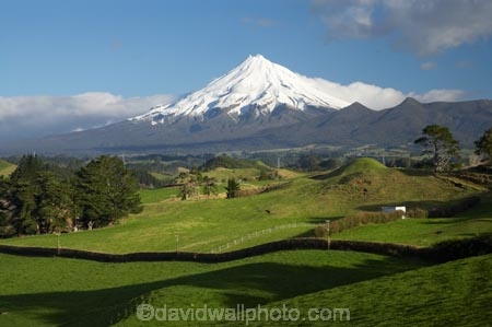 agricultural;agriculture;country;countryside;dairy-farm;dairy-farming;dairy-farms;farm;farming;farmland;farms;field;fields;meadow;meadows;Mount-Egmont;Mount-Taranaki;Mount-Taranaki-Egmont;Mountain;mountainous;mountains;mt;Mt-Egmont;Mt-Taranaki;Mt-Taranaki-Egmont;mt.;Mt.-Egmont;Mt.-Taranaki;Mt.-Taranaki-Egmont;N.I.;N.Z.;New-Zealand;NI;North-Is;North-Is.;North-Island;NZ;paddock;paddocks;pasture;pastures;rural;season;seasonal;seasons;snow;Taranaki;volcanic;volcano;volcanoes;winter