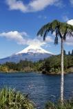 Lake-Mangamahoe;mountain;mountains;volcano;volcanoes;snow;winter;Mount-Taranaki;Mount-Egmont;taranaki;egmont;mt-taranaki;mt-egmont;mt.-taranaki;mt.-egmont;new-zealand;lakes;fern;ferns;tree;fern;tree-ferns