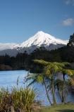 cyathea;fern;ferns;frond;fronds;lake;Lake-Mangamahoe;lakes;Mount-Egmont;Mount-Taranaki;Mount-Taranaki-Egmont;Mountain;mountainous;mountains;mt;Mt-Egmont;Mt-Taranaki;Mt-Taranaki-Egmont;mt.;Mt.-Egmont;Mt.-Taranaki;Mt.-Taranaki-Egmont;N.I.;N.Z.;New-Zealand;NI;North-Is;North-Is.;North-Island;NZ;plant;plants;ponga;pongas;punga;pungas;season;seasonal;seasons;snow;Taranaki;tree-fern;tree-ferns;volcanic;volcano;volcanoes;winter