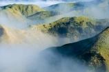 agricultural;agriculture;cloud;clouds;cloudy;country;countryside;farm;farming;farmland;farms;field;fields;fog;foggy;fogs;meadow;meadows;mist;mists;misty;N.I.;N.Z.;New-Zealand;NI;North-Island;NZ;paddock;paddocks;pasture;pastures;rural;Wanganui;Wanganui-Region