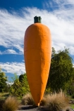 big-carrot-statue;big-carrot-statues;big-icons;carrot;carrots;Central-Plateau;giant-carrot-statue;giant-carrot-statues;icon;icons;N.I.;N.Z.;New-Zealand;NI;North-Island;NZ;Ohakune;orange;Ruapehu-Region;symbol;vegetable;vegetables