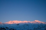 afternoon;alpenglo;alpenglow;alpine;central-plateau;cold;dusk;eveing;evening;freeze;freezing;last-light;Mount-Ruapehu;Mountain;mountainous;mountains;mt;Mt-Ruapehu;mt.;Mt.-Ruapehu;N.I.;N.Z.;New-Zealand;NI;nightfall;North-Island;NZ;orange;pink;ruapehu-district;season;seasonal;seasons;Ski-Areas;Ski-Fields;sky;snow;snowing;snowy;sunlight;sunset;sunsets;Tongariro-N.P.;Tongariro-National-Park;Tongariro-NP;twilight;volcanic;volcanic-plateau;volcano;volcanoes;Whakapapa-Ski-Area;Whakapapa-Skifield;white;winter;wintery;World-Heritage-Area;World-Heritage-Areas;World-Heritage-Site;World-Heritage-Sites