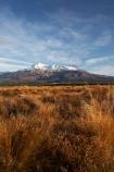 alpine;central-plateau;Mount-Ruapehu;Mountain;mountainous;mountains;mt;Mt-Ruapehu;mt.;Mt.-Ruapehu;N.I.;N.Z.;New-Zealand;NI;North-Island;NZ;ruapehu-district;snow;snow-tussock;snow-tussocks;Tongariro-N.P.;Tongariro-National-Park;Tongariro-NP;tussock;tussocks;volcanic;volcanic-plateau;volcano;volcanoes;World-Heritage-Area;World-Heritage-Areas;World-Heritage-Site;World-Heritage-Sites