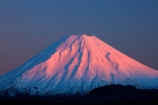 alpenglo;alpenglow;alpine;alpinglo;alpinglow;break-of-day;central;Central-North-Island;Central-Plateau;cold;color;colors;colour;colours;dawn;dawning;daybreak;first-light;island;morning;Mount-Ngauruhoe;mountain;mountainous;mountains;mt;Mt-Ngauruhoe;mt.;Mt.-Ngauruhoe;N.I.;N.Z.;national;National-Park;national-parks;new;new-zealand;ngauruhoe;NI;north;North-Is;north-island;NP;Nth-Is;NZ;orange;park;pink;plateau;Ruapehu-District;season;seasonal;seasons;snow;snowy;sunrise;sunrises;sunup;tongariro;Tongariro-N.P.;Tongariro-National-Park;Tongariro-NP;twilight;volcanic;volcanic-plateau;volcano;volcanoes;w3a9489;white;winter;wintery;World-Heritage-Area;World-Heritage-Areas;World-Heritage-Site;World-Heritage-Sites;zealand