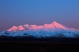 alpenglo;alpenglow;alpine;alpinglo;alpinglow;break-of-day;Central-North-Island;central-plateau;color;colors;colour;colours;dawn;dawning;daybreak;first-light;island;morning;Mount-Ruapehu;mountain;mountainous;mountains;mt;Mt-Ruapehu;mt.;Mt.-Ruapehu;N.I.;N.Z.;National-Park;national-parks;new;new-zealand;NI;north;North-Is;North-Island;NP;Nth-Is;NZ;orange;pink;ruapehu-district;snow;sunrise;sunrises;sunup;Tongariro-N.P.;Tongariro-National-Park;Tongariro-NP;twilight;volcanic;volcanic-plateau;volcano;volcanoes;w3a9471;World-Heritage-Area;World-Heritage-Areas;World-Heritage-Site;World-Heritage-Sites;zealand