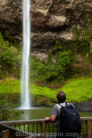 Bridal-Veil-Fall;Bridal-Veil-Falls;Bridalveil-Fall;Bridalveil-Falls;cascade;cascades;fall;falls;green;lush;N.Z.;natural;nature;New-Zealand;North-Is;North-Island;Nth-Is;NZ;Pakoka-River;people;person;scene;scenic;tourism;tourist;tourists;Waikato;Waireinga;water;water-fall;water-falls;waterfall;waterfalls;wet