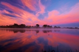 break-of-day;calm;dawn;dawning;daybreak;first-light;Hamilton-Lake;Hamilton-Lake-Domain;lake;Lake-Domain-Reserve;Lake-Hamilton;Lake-Rotoroa;lakes;morning;N.Z.;New-Zealand;North-Is;North-Island;Nth-Is;NZ;orange;pink;placid;quiet;reflected;reflection;reflections;serene;smooth;still;sunrise;sunrises;sunup;tranquil;twilight;Waikato;water