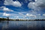 calm;cloud;clouds;duck;ducks;Hamilton-Hospital;Hamilton-Lake;Hamilton-Lake-Domain;hospiitals;hospital;lake;Lake-Hamilton;Lake-Rotoroa;lakes;N.Z.;New-Zealand;North-Is;North-Island;Nth-Is;NZ;placid;quiet;reflected;reflection;reflections;serene;smooth;still;tranquil;Waikato;Waikato-DHB;Waikato-District-Health-Board;Waikato-Hospital;water