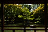botanic-garden;botanic-gardens;botanical-garden;botanical-gardens;garden;gardens;Hamilton-Garden;Hamilton-Gardens;Japanese-Garden;Japanese-Garden-of-Contemplation;Japanese-Gardens;N.Z.;New-Zealand;North-Is;North-Island;Nth-Is;NZ;Paradise-Collection;Paradise-Garden-Collection;pond;ponds;public-garden;public-gardens;Waikato;water-feature;water-features