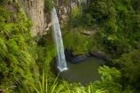 Bridal-Veil-Fall;Bridal-Veil-Falls;Bridalveil-Fall;Bridalveil-Falls;cascade;cascades;fall;falls;green;lush;N.Z.;natural;nature;New-Zealand;North-Is;North-Island;Nth-Is;NZ;Pakoka-River;scene;scenic;Waikato;Waireinga;water;water-fall;water-falls;waterfall;waterfalls;wet