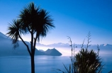 blue;cabbage-tree;cabbage-trees;calm;colour;haze;hazy;lake;lake-hawea;peaceful;silhouette;silhouetted;silhouettes;sun-beam;sun-beams;sun-ray;sun-rays;tranquil;tranquility