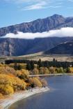 autuminal;autumn;autumn-colour;autumn-colours;autumnal;Central-Otago;cloud;clouds;color;colors;colour;colours;deciduous;End-Peak;fall;Glendhu-Bay;Harris-Mountains;lake;Lake-Wanaka;lakes;leaf;leaves;mist;mists;misty;N.Z.;New-Zealand;NZ;Otago;S.I.;season;seasonal;seasons;shoreline;shorelines;SI;South-Island;Southern-Lakes;Southern-Lakes-District;Southern-Lakes-Region;tree;trees;Wanaka;water;willow;willow-tree;willow-trees;willows
