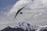 adrenaline;adventure;adventure-tourism;Air-Games;alp;alpine;alps;altitude;cloud;clouds;cloudy;excite;excitement;extreme;extreme-sport;fly;flyer;flying;free;freedom;hang-glide;hang-glider;hang-glider-pilot;hang-gliders;hang_glide;hang_glider;hang_glider-pilot;hang_gliders;high-altitude;main-divide;mount;Mount-Aspiring-National-Park;Mount-Aspiring-NP;mountain;mountain-peak;mountainous;mountains;mountainside;mt;Mt-Aspiring-National-Park;Mt-Aspiring-NP;mt.;Mt.-Aspiring-National-Park;Mt.-Aspiring-NP;N.Z.;New-Zealand;New-Zealand-Air-Games;NZ;NZ-Air-Games;Otago;peak;peaks;pilot;pilots;range;ranges;recreation;S.I.;SI;skies;sky;snow;snow-capped;snow_capped;snowcapped;snowy;South-Island;southern-alps;sport;sports;summit;summits;take-off;take_off;takeoff;view