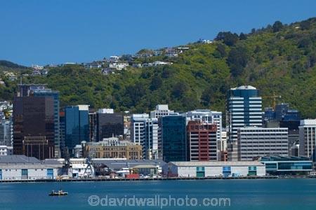 c.b.d.;CBD;central-business-district;cities;city;city-centre;cityscape;cityscapes;coast;coastal;down-town;downtown;Financial-District;harbor;harbors;harbour;harbours;high-rise;high-rises;high_rise;high_rises;highrise;highrises;hot;N.I.;N.Z.;New-Zealand;NI;North-Is.;North-Island;Nth-Is;NZ;office;office-block;office-blocks;office-building;office-buildings;offices;pontoon;pontoons;Port-Nicholson;Queens-Wharf;Queens-Wharf;summer;swimmer;swimmers;Te-Ahumairangi-Hill;Te-Whanganui_a_Tara;Tinakori-Hill;Wellington;Wellington-Harbor;Wellington-Harbour;Wellington-Waterfront