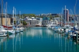 boat;boat-harbor;boat-harbors;boat-harbour;boat-harbours;boats;calm;capital;capitals;Chaffers-Marina;coast;coastal;cruiser;cruisers;harbor;harbors;harbour;harbours;launch;launches;marina;marinas;mast;masts;mooring;N.I.;N.Z.;New-Zealand;NI;North-Is;North-Is.;North-Island;Nth-Is;NZ;placid;port;Port-Nicholson;ports;quiet;reflected;reflection;reflections;sail;sailing;serene;smooth;still;Te-Whanganui_a_Tara;tranquil;water;waterfront;Wellington;Wellington-Harbor;Wellington-Harbour;Wellington-Waterfront;yacht;yachts