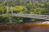 beautiful;beauty;bridge;bridges;bush;endemic;fern;ferns;foot-bridge;foot-bridges;footbridge;footbridges;forest;forests;Great-Walk;Great-Walks;green;Heaphy-Track;hike;hiker;hikers;hiking;hiking-track;hiking-tracks;Kahurangi-National-Park;Karamea;Kohaihai-River;lush;national-park;national-parks;native;native-bush;natives;natural;nature;New-Zealand;nikau;nikau-palm;nikaus;Nothofagus;pedestrian-bridge;pedestrian-bridges;people;person;ponga;pongas;punga;pungas;rain-forest;rain-forests;rain_forest;rain_forests;rainforest;rainforests;rivers;scene;scenic;South-Island;southern-beeches;suspension-bridge;suspension-bridges;swing-bridge;swing-bridges;tannin;tannin-stained;tannin-stained-river;tannin-stained-water;tannin_stained;tannin_stained-river;tannin_stained-water;track;tracks;tree;tree-fern;tree-ferns;trees;verdant;walker;walkers;walking;walking-track;walking-tracks;West-Coast;Westland;wire-bridge;wire-bridges