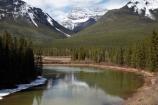 AB;Alberta;Albertas-Rockies;backwater;backwaters;Banff;Banff-N.P.;Banff-National-Park;Banff-NP;Bow-River;Canada;Canadian;Canadian-Cordillera;Canadian-Rockies;Canadian-Rocky-Mountain-Parks;Canadian-Rocky-Mountain-Parks-World-Heritage-Site;Mount-Brett;Mt-Brett;Mt.-Brett;North-America;North-American-Cordillera;North-American-Rocky-Mountains-Range;oxbow;Oxbow-bend-backwater;oxbow-river;oxbow-rivers;oxbows;Rocky-Mountains;Rocky-Mountains-Range;Sawback;UN-world-heritage-area;UN-world-heritage-site;UNESCO-World-Heritage-area;UNESCO-World-Heritage-Site;united-nations-world-heritage-area;united-nations-world-heritage-site;Western-Canada;Western-Cordillera;world-heritage;world-heritage-area;world-heritage-areas;World-Heritage-Park;World-Heritage-site;World-Heritage-Sites
