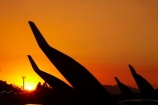 3rd-Fai-World-Sailplane-Grand-Prix-Final;Chile;Club-de-Planeadores-de-Santiago;dusk;evening;F.A.I.;Fai-World-Sailplane-Grand-Prix;glider;gliders;gliding;Gliding-Grand-Prix;Municipal-de-las-Condes;Municipal-de-Vitacura;nightfall;orange;sail-plane;sail-planes;sail-planing;sail_plane;sail_planes;sail_planing;sailplane;sailplanes;sailplaning;Santiago;SCLC;sky;South-America;Sth-America;sunset;sunsets;twilight;Vitacura;Vitacura-Airfield;Vitacura-Airport;wing;wings;World-Gliding-Grand-Prix