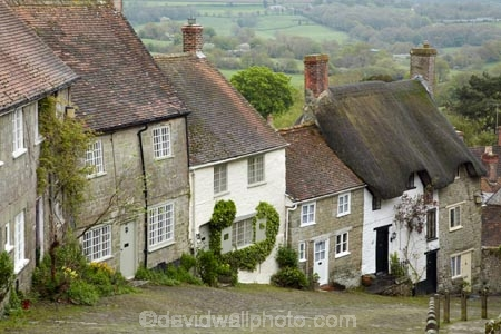 Britain;building;buildings;Dorset;England;G.B.;GB;Gold-Hill;grass-roof;Great-Britain;heritage;historic;historic-building;historic-buildings;historical;historical-building;historical-buildings;history;old;roof;roofing-material;roofs;rooves;Shaftesbury;steep-cobbled-street;stone-buidling;stone-buildings;straw-roof;straw-rooves;thatch;thatched;thatched-cottage;thatched-cottages;thatched-house;thatched-houses;thatched-roof;thatched-roofs;thatched-rooves;thatching;tradition;traditional;traditional-thatched-cottage;traditional-thatched-cottages;U.K.;UK;United-Kingdom