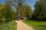 Britain;British-Isles;East-Sussex;England;Europe;Footpath;footpaths;G.B.;GB;Great-Britain;image;images;parkland;parks;photo;photos;South-East-England;Sussex;tree;trees;U.K.;UK;United-Kingdom