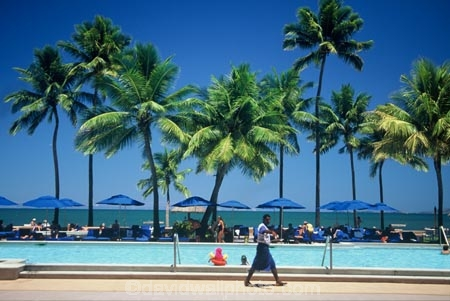 beach;beaches;coast;coastline;coconut-palm;coconut-palms;coconut-tree;coconut-trees;cocos-nucifera;heavenly;holiday;holidays;horizon;horizons;idyllic;island;islands;leisure;melanesia;ocean;outdoor;outdoors;outside;pacific;palm;palm-tree;palms;palm-trees;paradise;plant;plants;sand;sandy;scenic;scenics;sea;shore;shores;shoreline;summer;summertime;travel;travels;tree;trees;tropical;vacation;vacations;vegetation;viti-levu;water;world-locations;world-travel;relax;relaxing;serene;peaceful;quiet;restful;rest;calm;tranquil;still;alone;calmness;relaxation;silence;sunset;sunsets;dusk;sky;swim;swimming;swimming-pool;sun;sun-bathe;resort;lodge;hotel;lounge;water