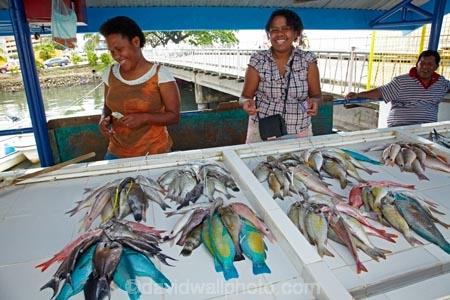 Fish stall by nabukalou creek suva viti levu fiji for Pacific fish market