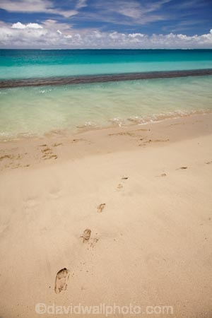 aqua;aquamarine;beach;beaches;blue;clean-water;clear-water;coast;coastal;coastline;coastlines;coasts;cobalt-blue;cobalt-ultramarine;cobaltultramarine;Coral-Coast;Fij;Fiji;Fiji-Islands;foot-print;foot-prints;footprint;footprints;footstep;footsteps;foreshore;Natadola;Natadola-Beach;Natadola-Harbor;Natadola-Harbour;ocean;oceans;Pacific;Pacific-Ocean;paradise;sand;sandy;sea;seas;shore;shoreline;South-Pacific;surf;teal-blue;tropical-island;tropical-islands;turquoise;Viti-Levu;wave;waves