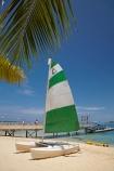 beach;beaches;boat;boats;catamaran;coast;coastal;coastline;coastlines;coasts;Fij;Fiji;Fiji-Islands;foreshore;hobie-cat;hobiecat;holiday;holiday-resort;holiday-resorts;holidays;Malolo-Lailai-Is;Malolo-Lailai-Island;Malololailai-Is;Malololailai-Island;Mamanuca-Group;Mamanuca-Is;Mamanuca-Island-Group;Mamanuca-Islands;Mamanucas;ocean;Pacific;Pacific-Island;Pacific-Islands;palm;palm-frond;palm-fronds;palm-tree;palm-trees;palms;Plantation-Is;Plantation-Is-Resort;Plantation-Island;Plantation-Island-Resort;resort;resort-hotel;resort-hotels;resorts;sand;sandy;sea;shore;shoreline;shorelines;shores;South-Pacific;tropical-island;tropical-islands;vacation;vacations;water;yacht;yachts
