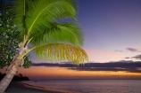 coast;coastal;coastline;coastlines;coasts;dusk;evening;Fij;Fiji;Fiji-Islands;foreshore;holiday;holiday-resort;holiday-resorts;holidays;Malolo-Lailai-Is;Malolo-Lailai-Island;Malololailai-Is;Malololailai-Island;Mamanuca-Group;Mamanuca-Is;Mamanuca-Island-Group;Mamanuca-Islands;Mamanucas;nightfall;ocean;orange;Pacific;Pacific-Island;Pacific-Islands;palm;palm-frond;palm-fronds;palm-tree;palm-trees;palms;Plantation-Is;Plantation-Is-Resort;Plantation-Island;Plantation-Island-Resort;resort;resort-hotel;resort-hotels;resorts;sea;shore;shoreline;shorelines;shores;sky;South-Pacific;sunset;sunsets;tropical-island;tropical-islands;twilight;vacation;vacations;water